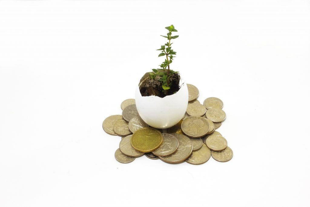 plant-and-money_f1_4qJKu